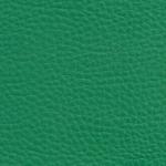 green 6602
