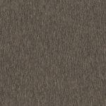 Brushed Titanium 5086 Kopyala