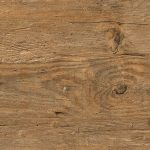 2249 Wild Amber Oak 1024 x 768